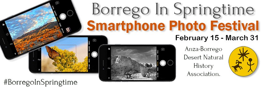 Borrego In Springtime Smartphone Photo Festival