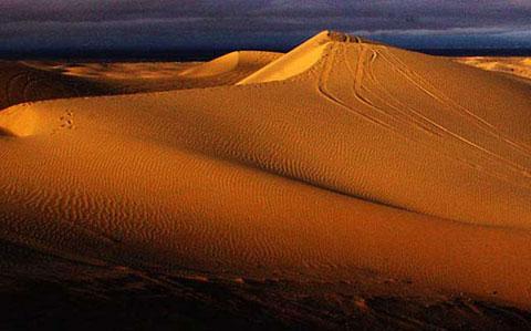 Anza Borrego Algones Dunes