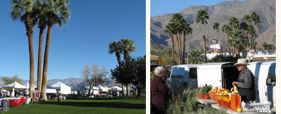 borrego springs farmers market